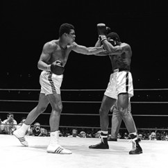 Muere el ex campeón Ernie Terrell